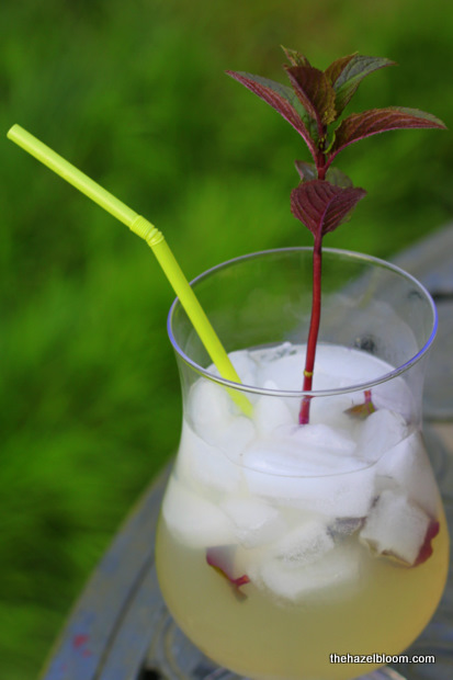 Rummy Lemonade with Peppermint Swizzle Stick