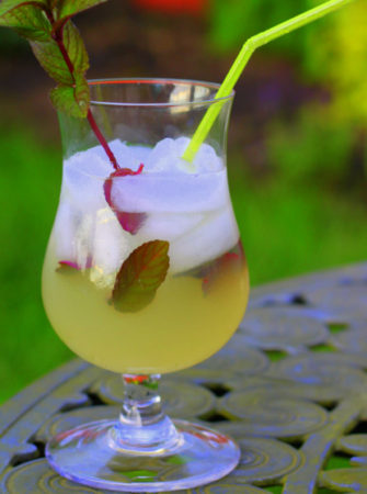 Rummy Lemonade with Peppermint Swizzle Stick