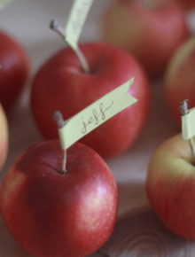 Crabapple Flag Placecards for Thanksgiving | Kitchen Treaty