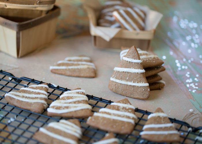 This easy Christmas cookie recipe is one of our favorites to make. Perfectly spiced dough, cut super-easily into tree shapes with a knife, then after they're baked and cooled, they finish up in a snap with quick lines of simple lemony icing and a sprinkle of coarse sugar for sparkle. Yum! #gingerbreadcookies