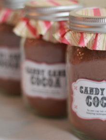 Homemade Candy Cane Hot Cocoa Mix   Kitchen Treaty