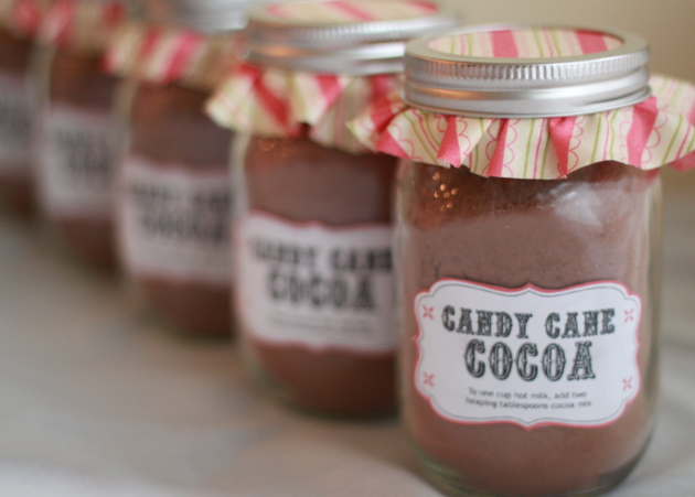 Homemade Candy Cane Hot Cocoa Mix recipe - Dark AND white chocolates plus crushed candy canes make this a decadent, festive hot cocoa mix. Gift a jar with a big bundle of candy canes and maybe even a bottle of peppermint schnapps or Bailey's Irish cream. 'Tis the season!