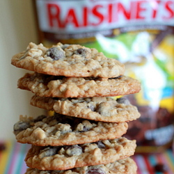 Dark Chocolate Raisinet Oatmeal Cookies