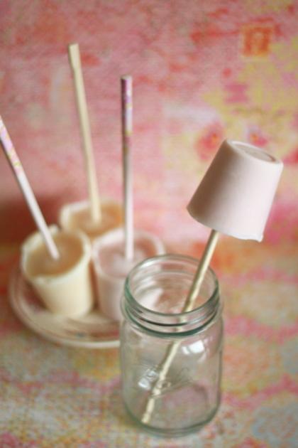 frozen-yogurt-pops-4
