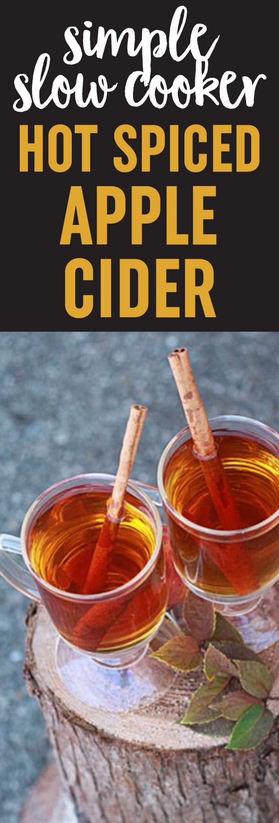 Simple Slow Cooker Hot Spiced Apple Cider