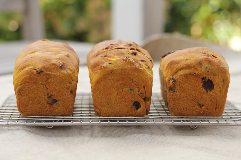Cranberry Walnut Pumpkin Loaf from Karen's Kitchen Stories // 45 Glorious Pumpkin Breakfast Recipes | Kitchen Treaty