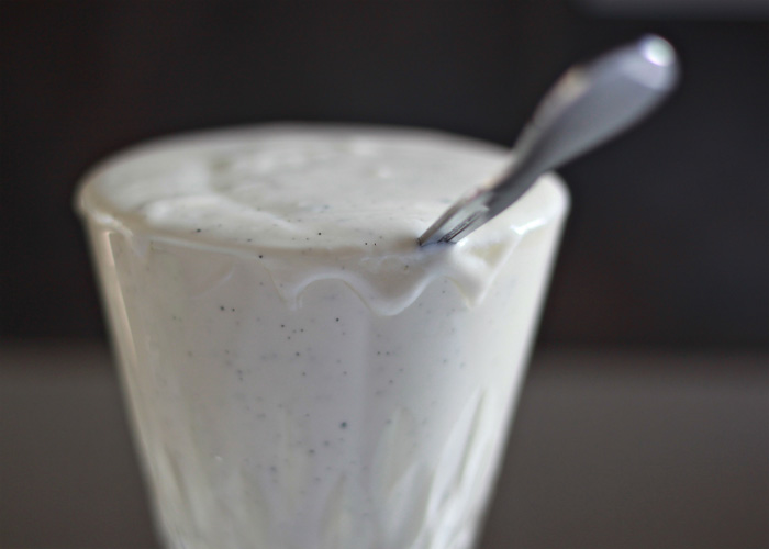 Vanilla Bean and Honey Yogurt | kitchentreaty.com