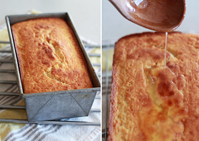 Meyer Lemon Olive Oil Yogurt Cake - Kitchen Treaty
