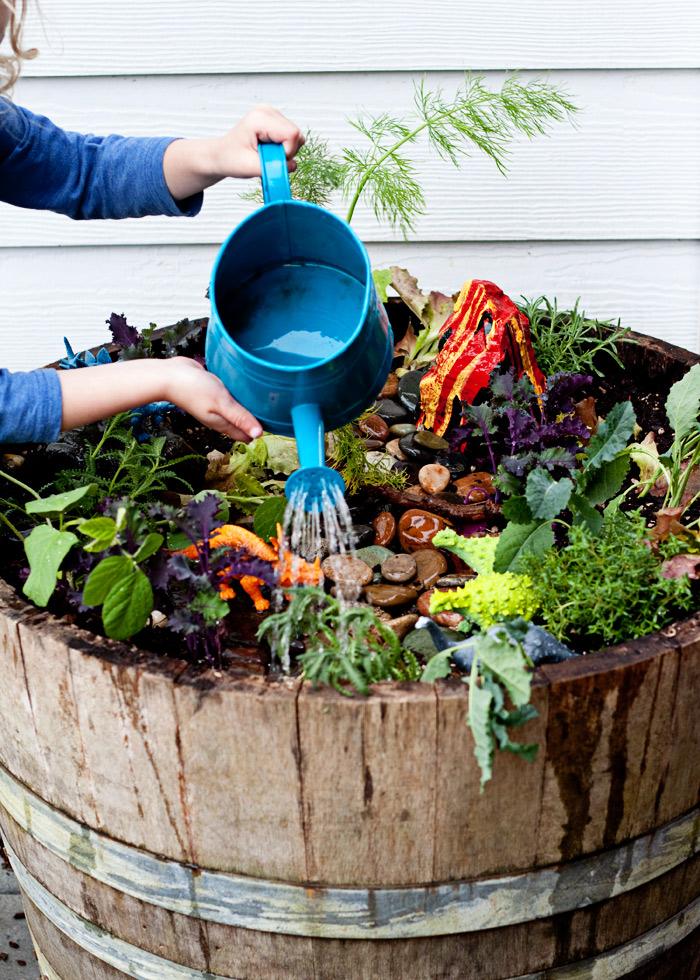 herbivore-garden