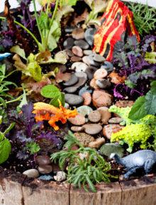 how-to-make-a-dinosaur-garden3
