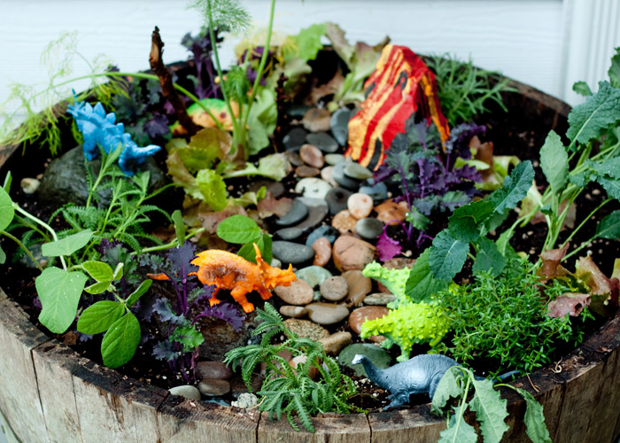 how-to-make-a-dinosaur-garden5