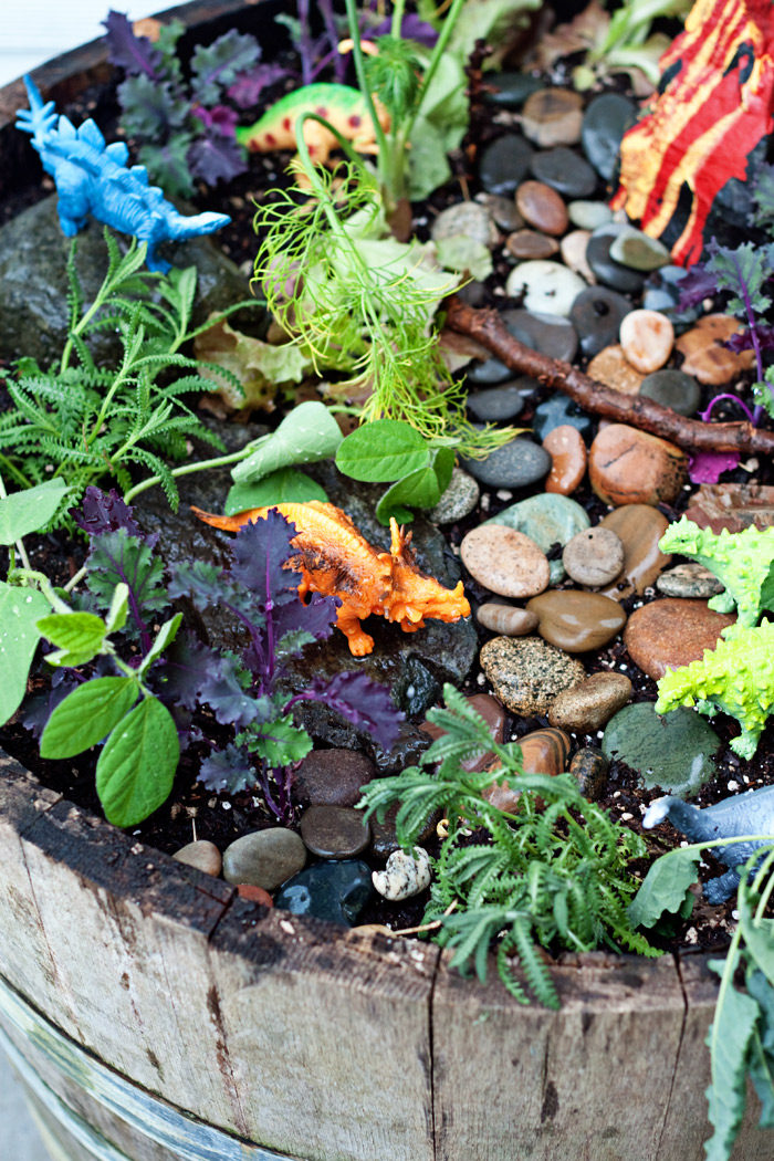 Dinosaur Garden! A fun, less expensive, and interactive alternative to a fairy garden. This one's an herbivore-only, edible version planted with kale, lettuce, thyme, and more.