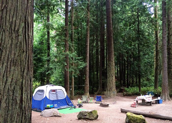in-camp
