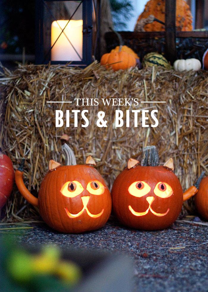 bits-and-bites-20161027