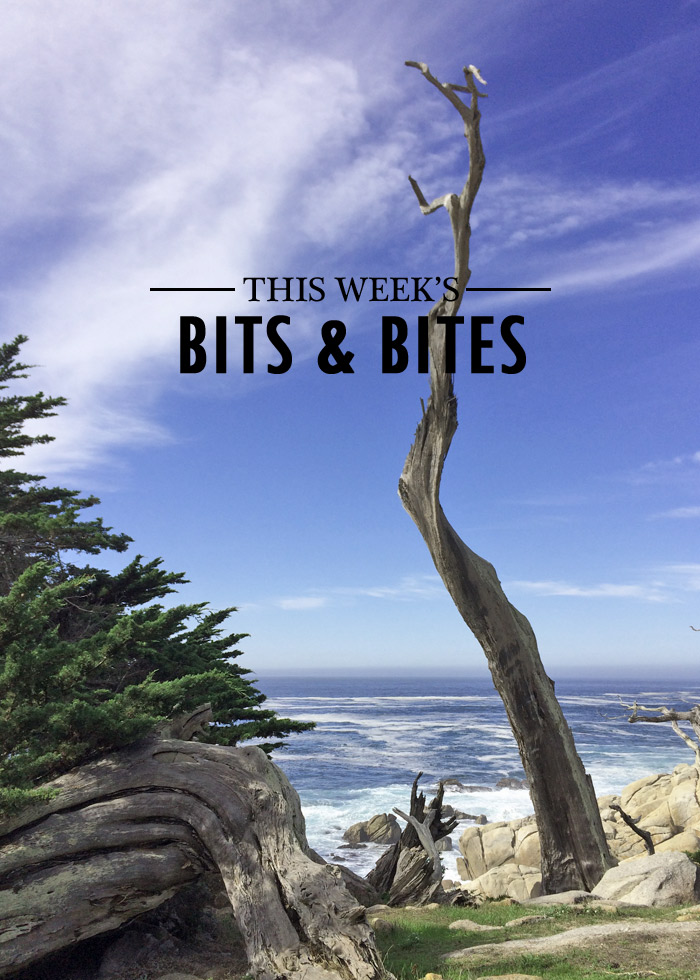 bits-and-bites-20161111-2