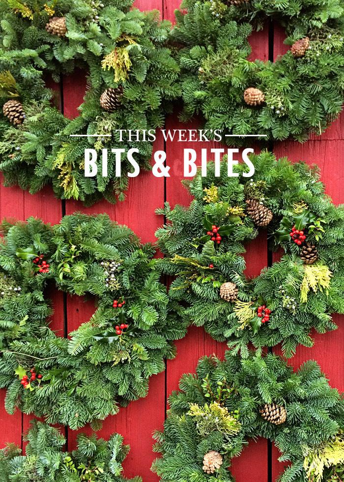bits-and-bites-20161125