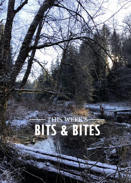 bits-and-bites-20170106