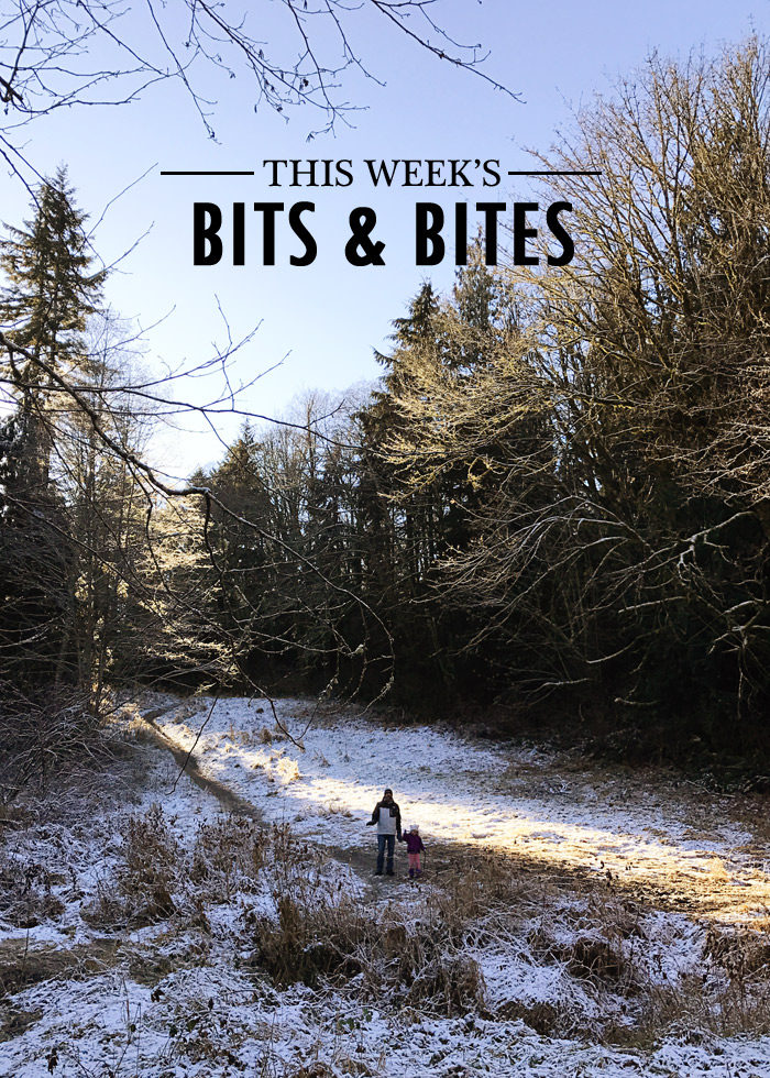 This Week's Bits & Bites - Kitchen Treaty